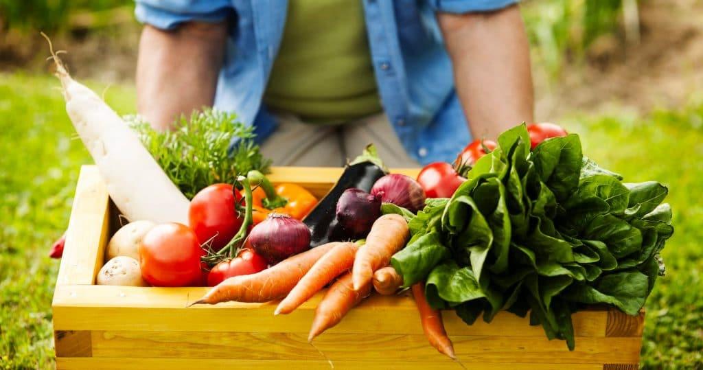 3 avantages à manger local — Mon Epicier Bio 3be5c9d210cc